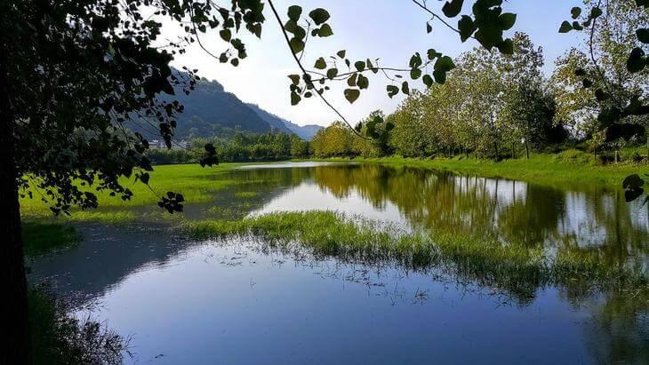 دریاچه کومله لنگرود